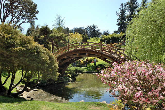 Los Angeles Japanese Garden: Japanese-garden-bridge-huntington-library