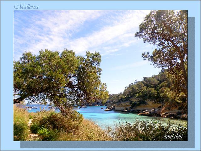 Por el sendero, al Paraiso.......On the way to Paradise