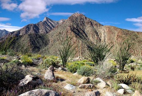 california travel flowers blue cactus sky mountains clouds landscape rocks desert dream peak canyon ocatillo