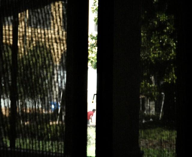 Lavori in corso in giardino flickr photo sharing - Lavori in giardino ...