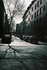 Leica Summicron-R 50mm
