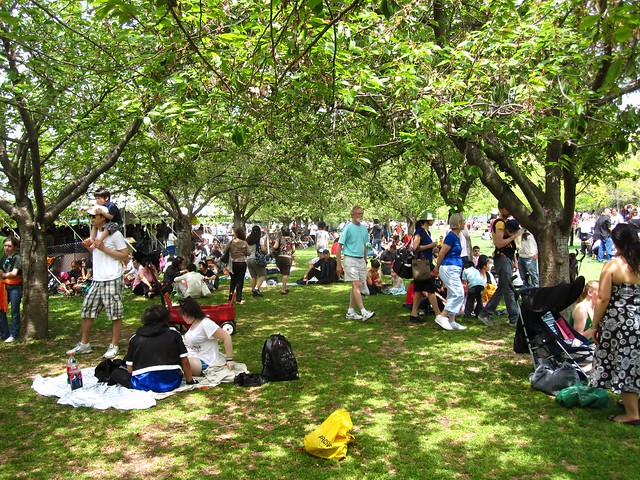Visitors enjoy balmy weather and shade at Sakura Matsuri 2010.