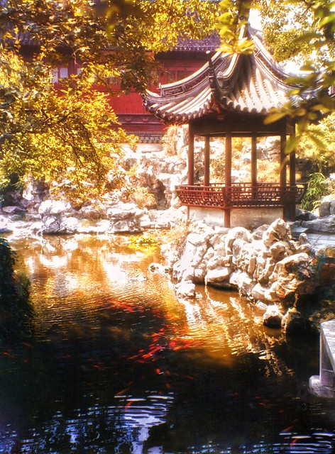 Goldfish Pond and Pagoda