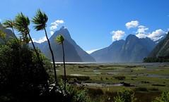 New Zealand 2010 - Southland - Fiordland