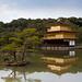 Kinkaku-ji : The Golden Pavillon by jiquem