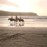 Horse riders Abereiddy