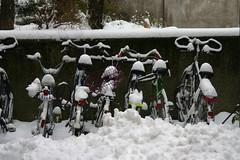 Bicicletas bajo la nieve