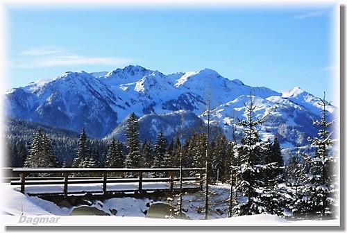 Winter - 2010