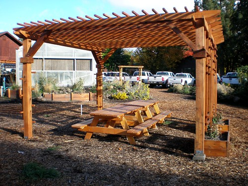 Building an arbor at home is a great DIY project