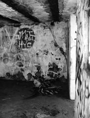 Battery Croghan, Fort San Jacinto, Galveston, Texas 0116101738BW