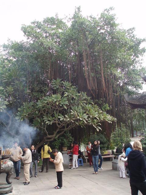 PB170068 Hanoi   Flickr - Photo Sharing!