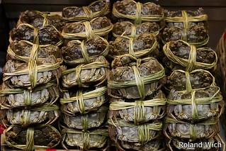 Hong Kong - Shanghai Crab