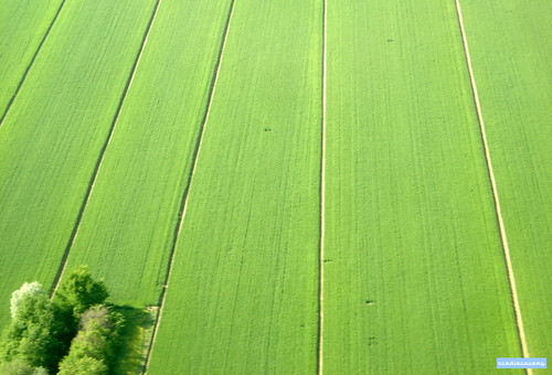 Italian countryside, aerial photograph