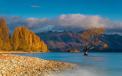 Autumn at the Lake Wanaka