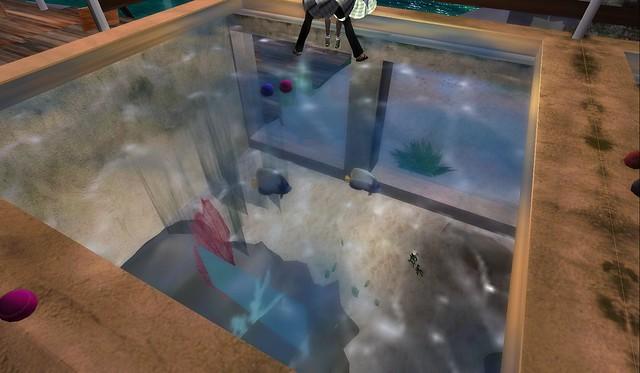 Aquarium Under Dance Floor At La Habana Beach Club