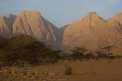Wadi Adeib