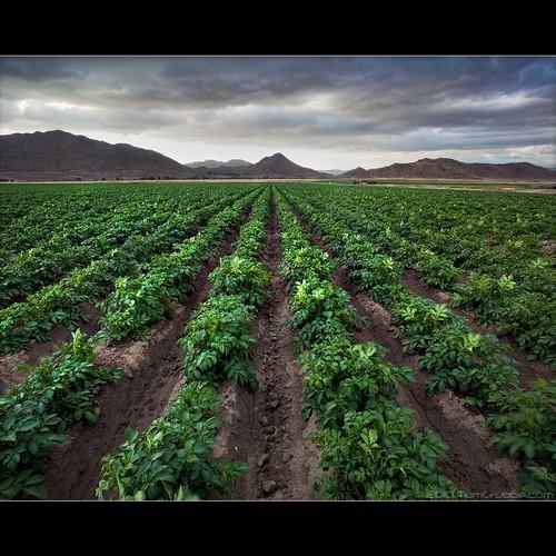storm landscape countryside wind farm hills rows crops lakeview sanjacintowildlifearea