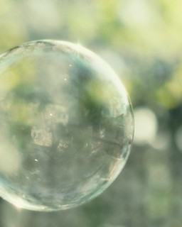 i wonder how much it would take to buy a soap bubble, if there were only one in the world ~ mark twain ~