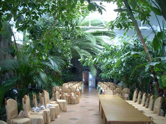 Winter garden restaurant in zbarazh western ukraine - Best restaurants in winter garden ...