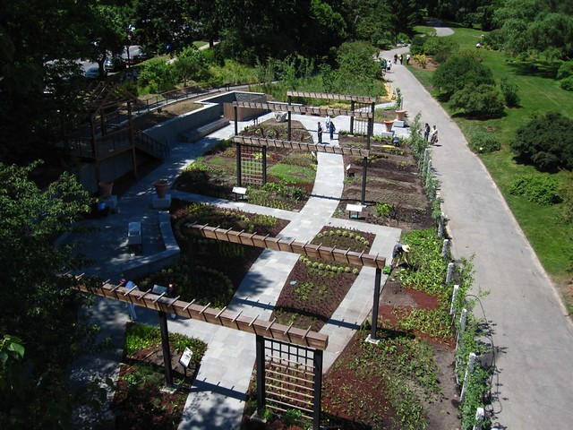 A view of the Herb Garden from above. Photo by Chris Roddick.