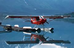 monoplane, aerobatics, aviation, airplane, wing, vehicle, light aircraft, general aviation, seaplane, flight, ultralight aviation,