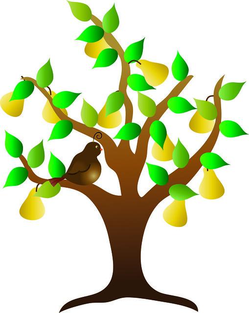 Pear Tree Clipart