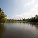 Small photo of Alappuzha Backwaters