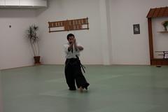 daitå ryå« aiki jå«jutsu, aikido, hapkido, iaidå, individual sports, sports, martial arts,