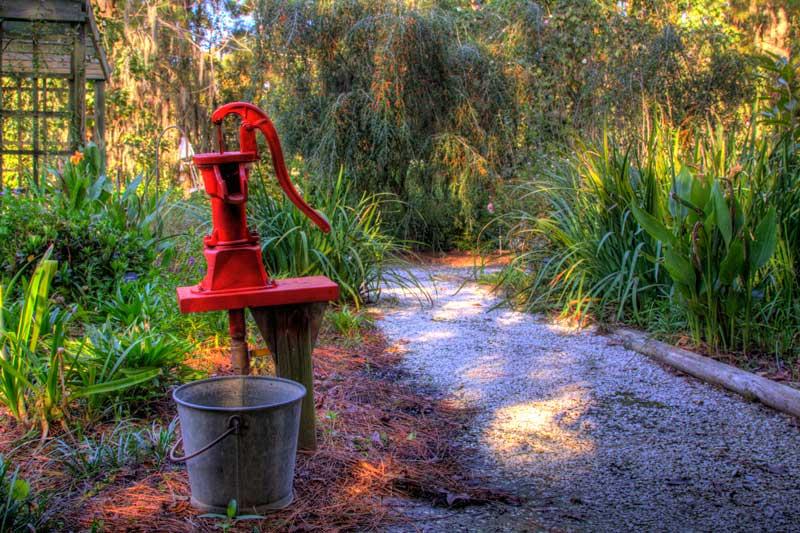 On Black Botanical Garden Savannah Ga By Malalina43 Large