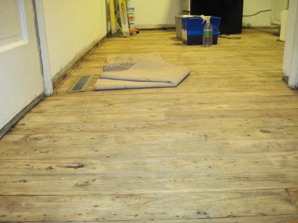 Removing linoleum flooring rust belt rebel for Linoleum flooring companies