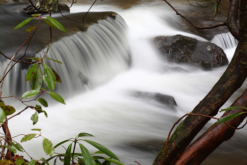 longexposure sc water creek river waterfall rocks stream southcarolina twinfalls rhododendron cascades naturephotography pickens rhodo pickenscounty davidhopkinsphotography reedycove