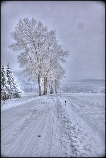- snow -