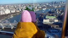 Poesy looks down, London Eye, South Bank, London, UK 2.JPG