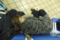 Molly Napping
