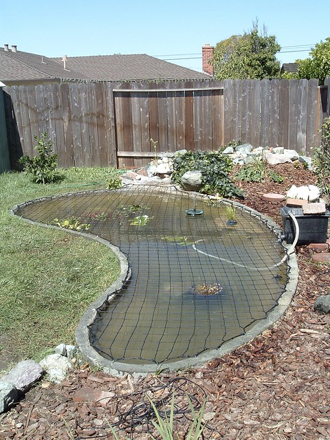Katchakid pond safety net cover flickr photo sharing for Garden pond safety covers