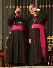 cardinal, clergy, clothing, priest, bishop, priesthood, person, bishop,