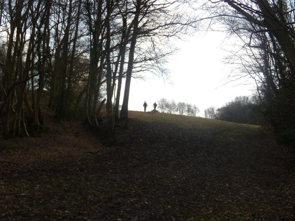 Up a slope Stonegate to Robertsbridge