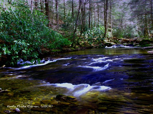 creek forest waterfall branch sill falls national tennesee clarks