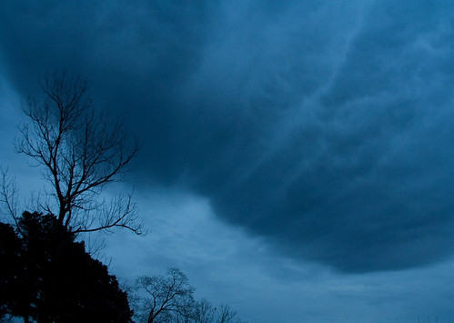 storm tree clouds dark texasdekalbbluegray