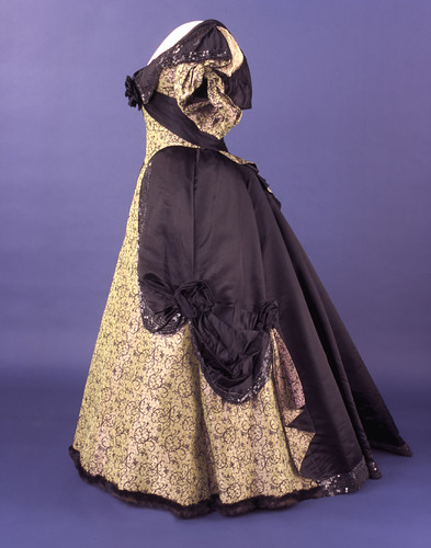 Frances Cleveland's Evening Gown