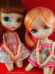 Friends (Pullip Greggia and Shinku)