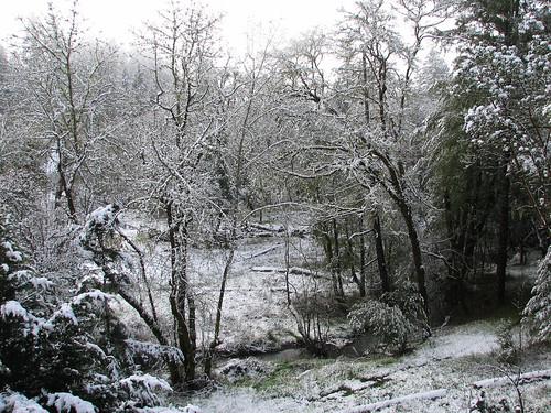snow spring brooktrails uppcreek