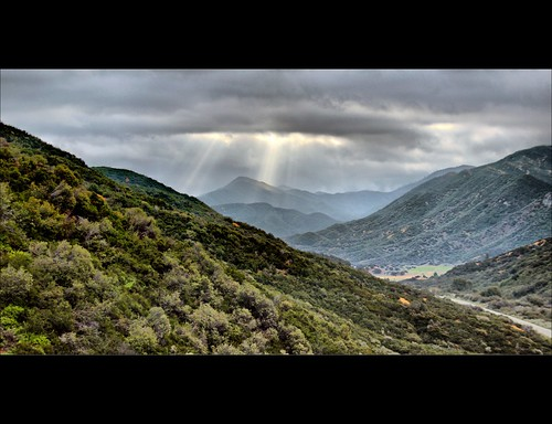 Los Padres National Forest, Rose Valley