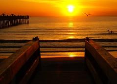 sunrise silhouette2