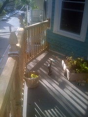 floor, baluster, handrail, property, porch,