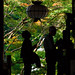 People are Praying Inside Hase-dera Temple, Nara, Japan by ILYA GENKIN / GENKIN.ORG