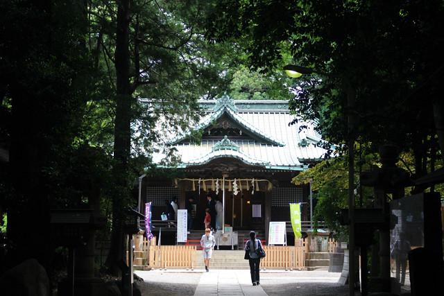 yoyogihachimangu22