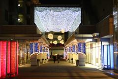 代官山のクリスマスイルミネーション