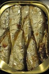 20100108 Sardines 002