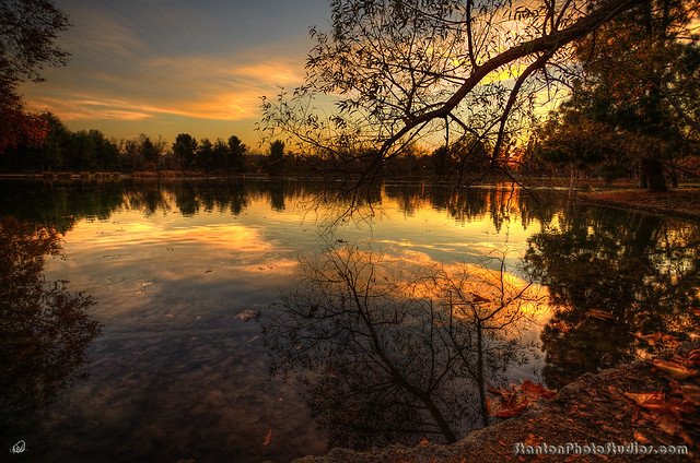 Golden Hour on duck pond - over 1000 comments! Yippeeee!